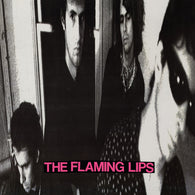 The Flaming Lips ‎– In A Priest Driven Ambulance