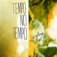 Tempo No Tempo ‎– Waking Heat (Clear Vinyl)