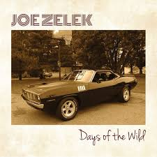 Joe Zelek - Days of the wild (CD)