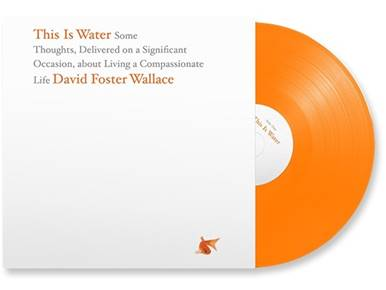 what is water by david foster wallace