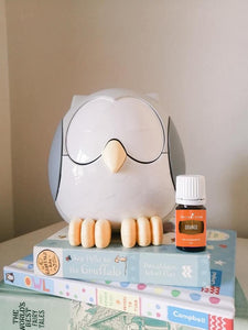 Feather the Owl Diffuser (including 5ml Orange oil)