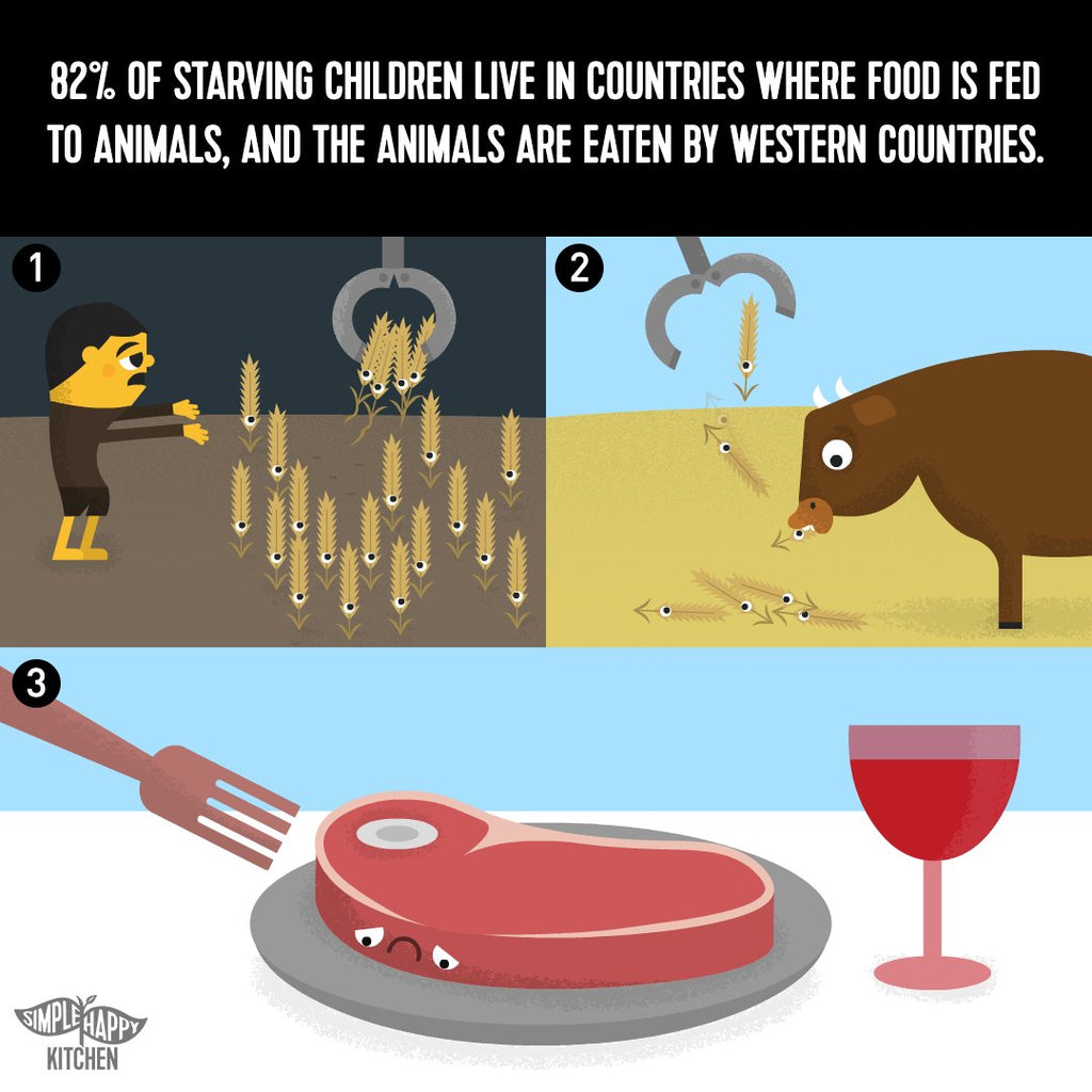 82% of starving children live in countries where food is fed to animals, and the animals are eaten by western countries