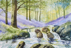 Bluebell Waterfalls