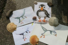 Art Class: Painting Orkney Puffins