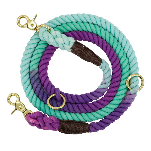 Two-In-One Drag Two Double-Headed Double Dog Walking Dog Rope Half-Chain Collar Small Dog