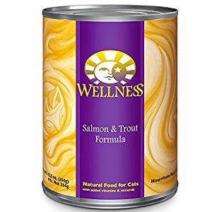 Health Salmon & Trout Formula Canned Cat Food