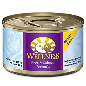 Health Beef & Salmon Formula Grain-Free Canned Cat Food