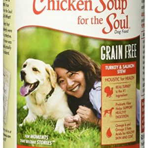 Chicken Soup for the Soul Grain Free Turkey & Salmon Stew Dog