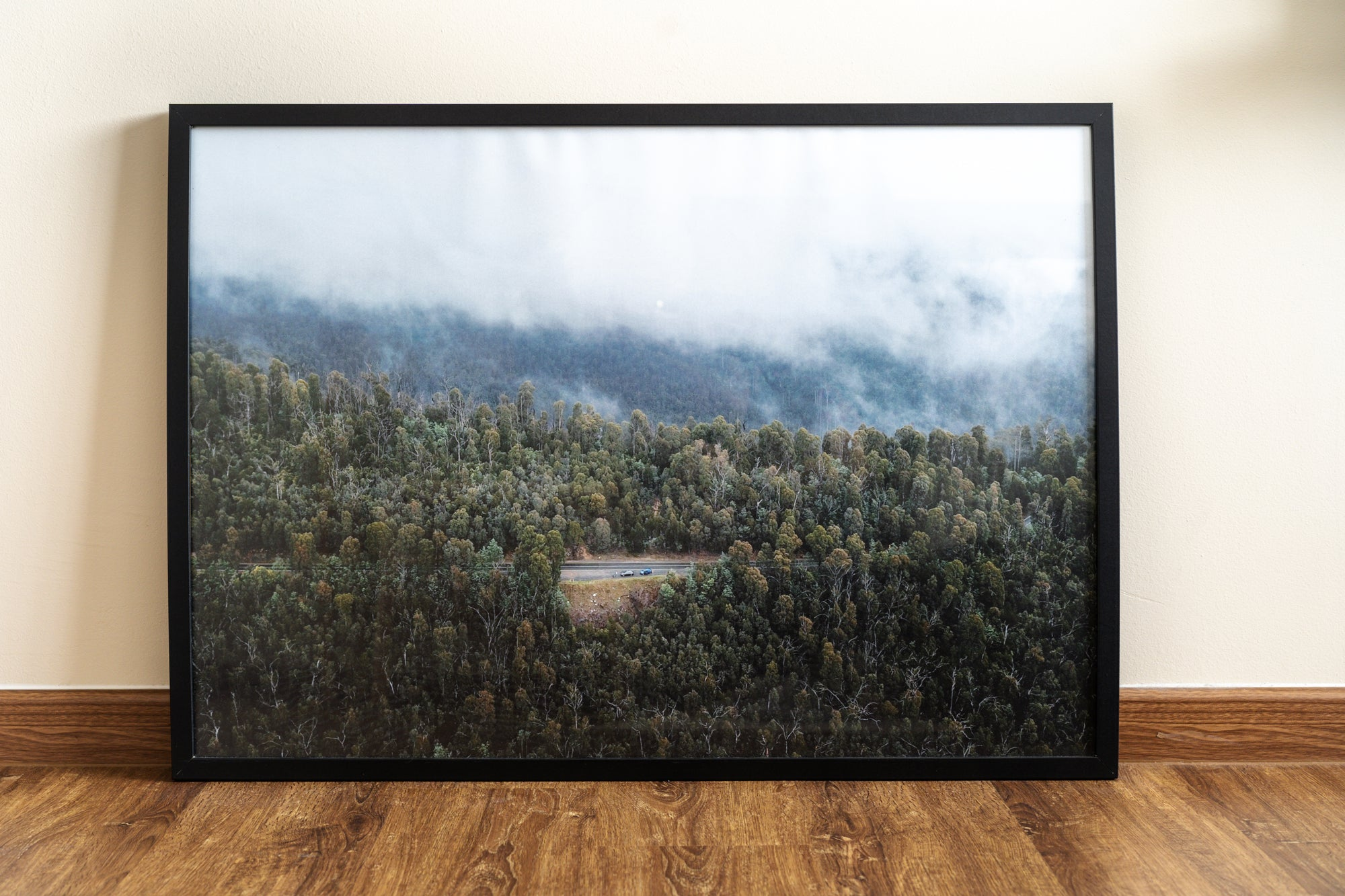 drone shot of forest in black photo frame
