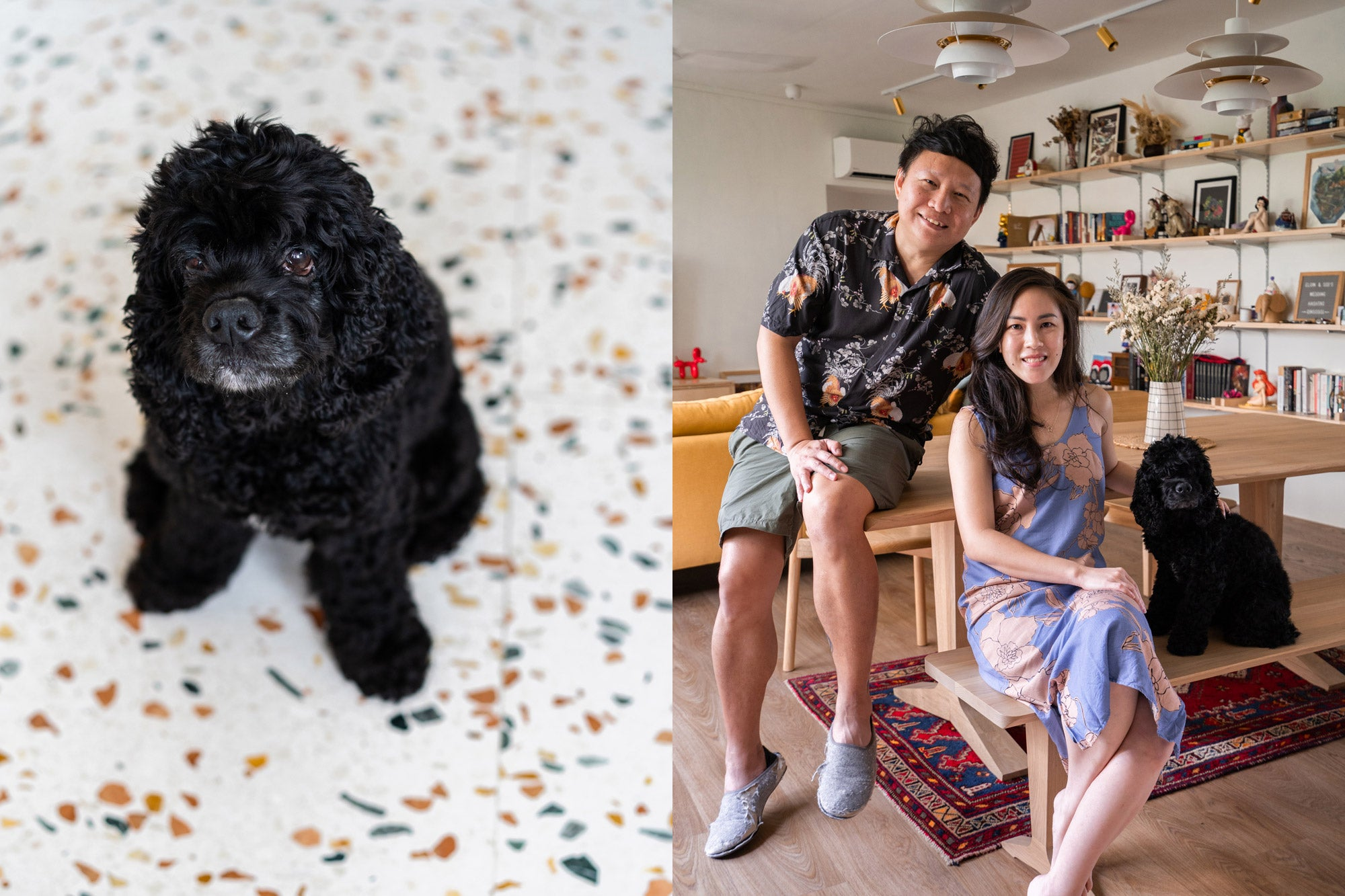 singapore couple in modern cosy home with black dog