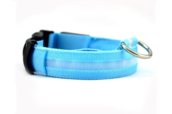 Collier LED de protection pour Chien - Europe Deal