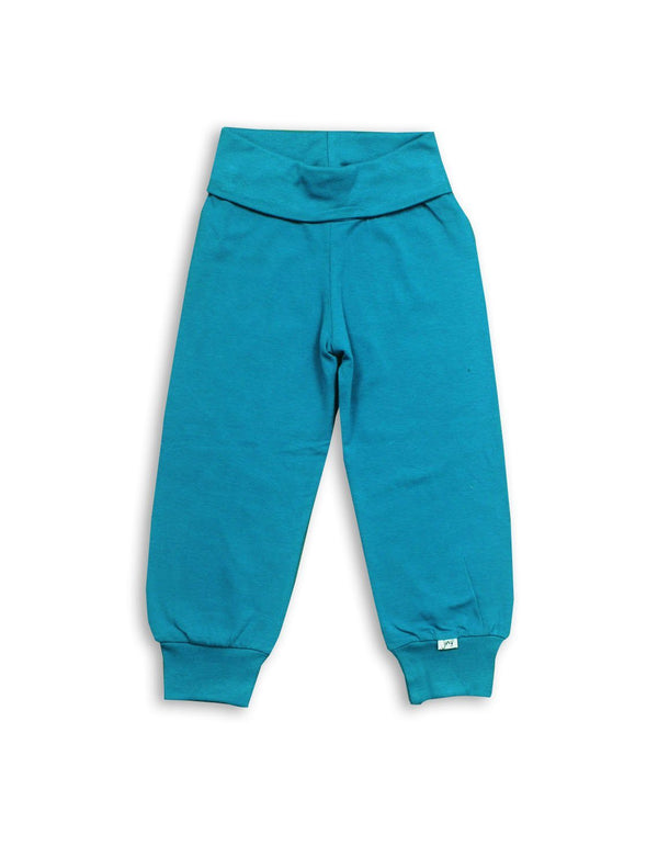 Polar blue pants JNY