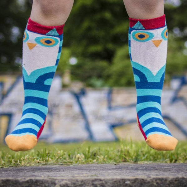 Owl double pack knee socks Merle