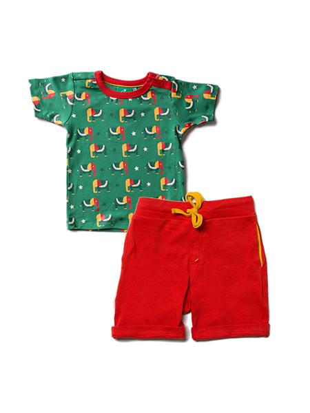 Starry eyed elephant t-shirt set Little Green Radicals playsuit Little Green Radicals