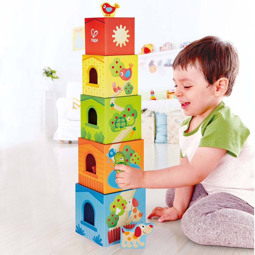 Friendship stacking cubes Hape Toys Hape
