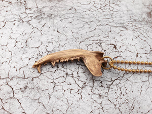 Gaag Jaw Bone Necklace