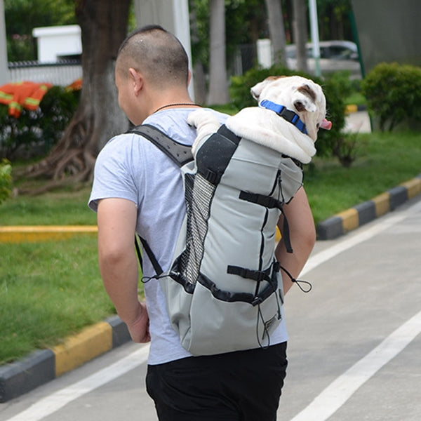 Big Dog Travel Carrier Backpack-YES WE PETS