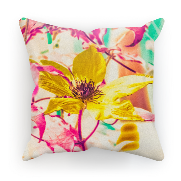 AAC: CRB-O Photography: For Andy Pillow Cover