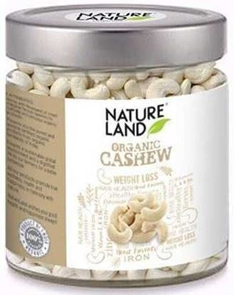 Nature Land Cashew 200gm