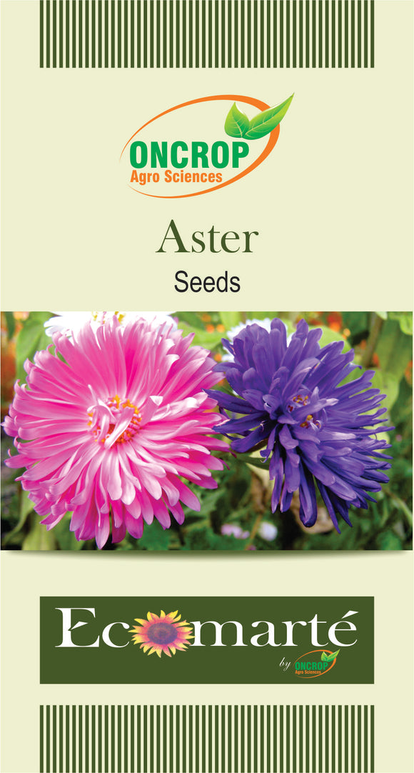 Oncrop Aster Seeds