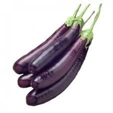 Brinjal Purple Long