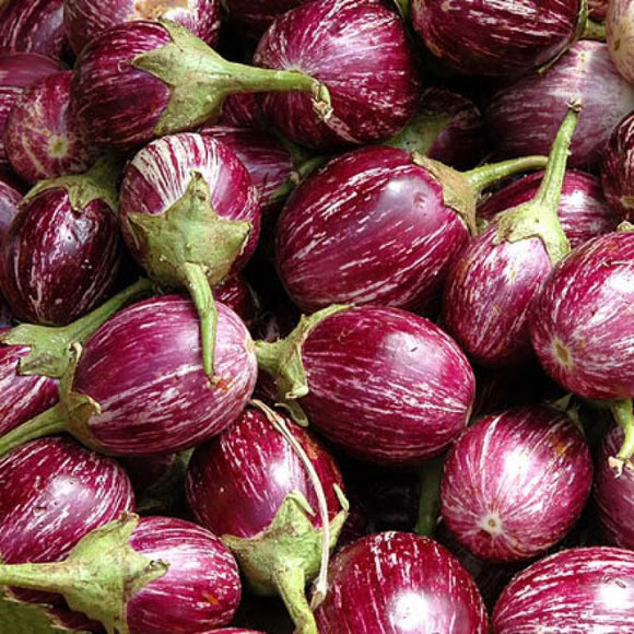 Brinjal Purple Small