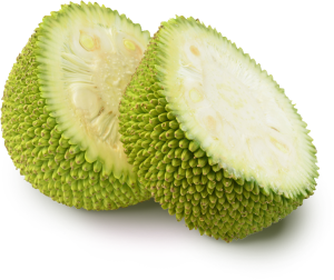 Raw Jackfruit
