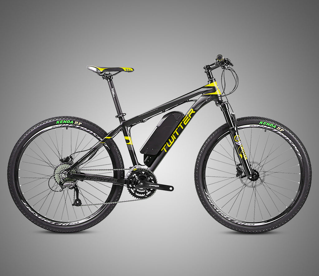 BearBIKE Electric Mountain Bicycle