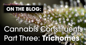 Cannabis Constituents Part Three: Trichomes