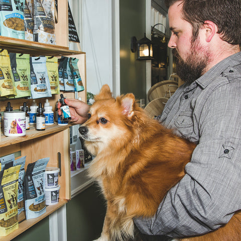 District Hemp CBD for Pets