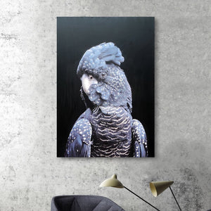 Purple Parrot - paintingsonline.com.au
