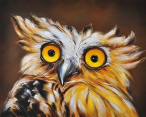 Surprised Owl on Canvas - paintingsonline.com.au