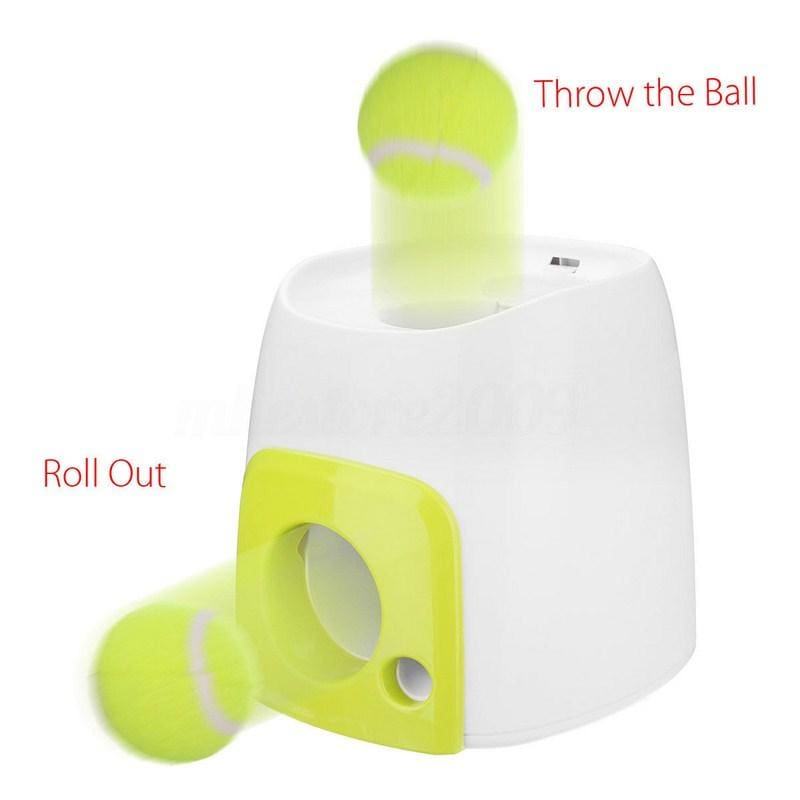 Automatic Dog Exercise Ball Roller