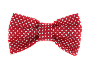 Cupid Dog Bow Tie