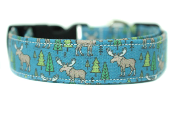 Bodhi Dog Collar