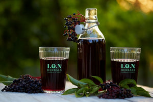 Boost Your Wellness With Elderberries