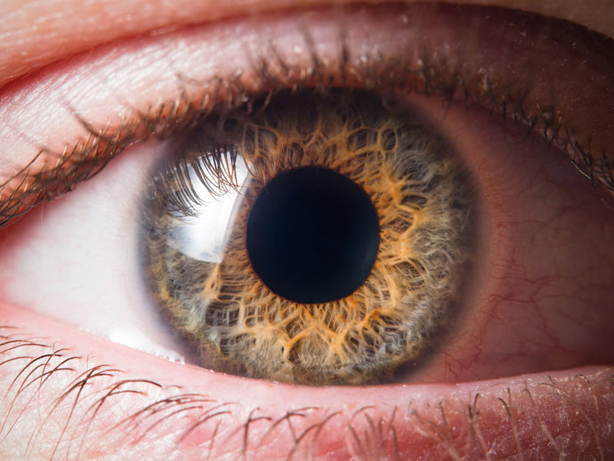 Ever Wondered What Your Eyes Reveal About Your Health?