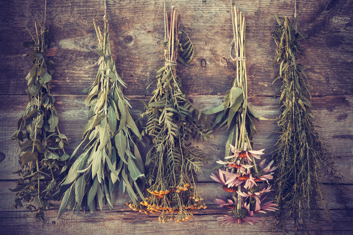 Choosing The Best Quality Dried Herbs