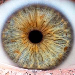 Iridology Consultation