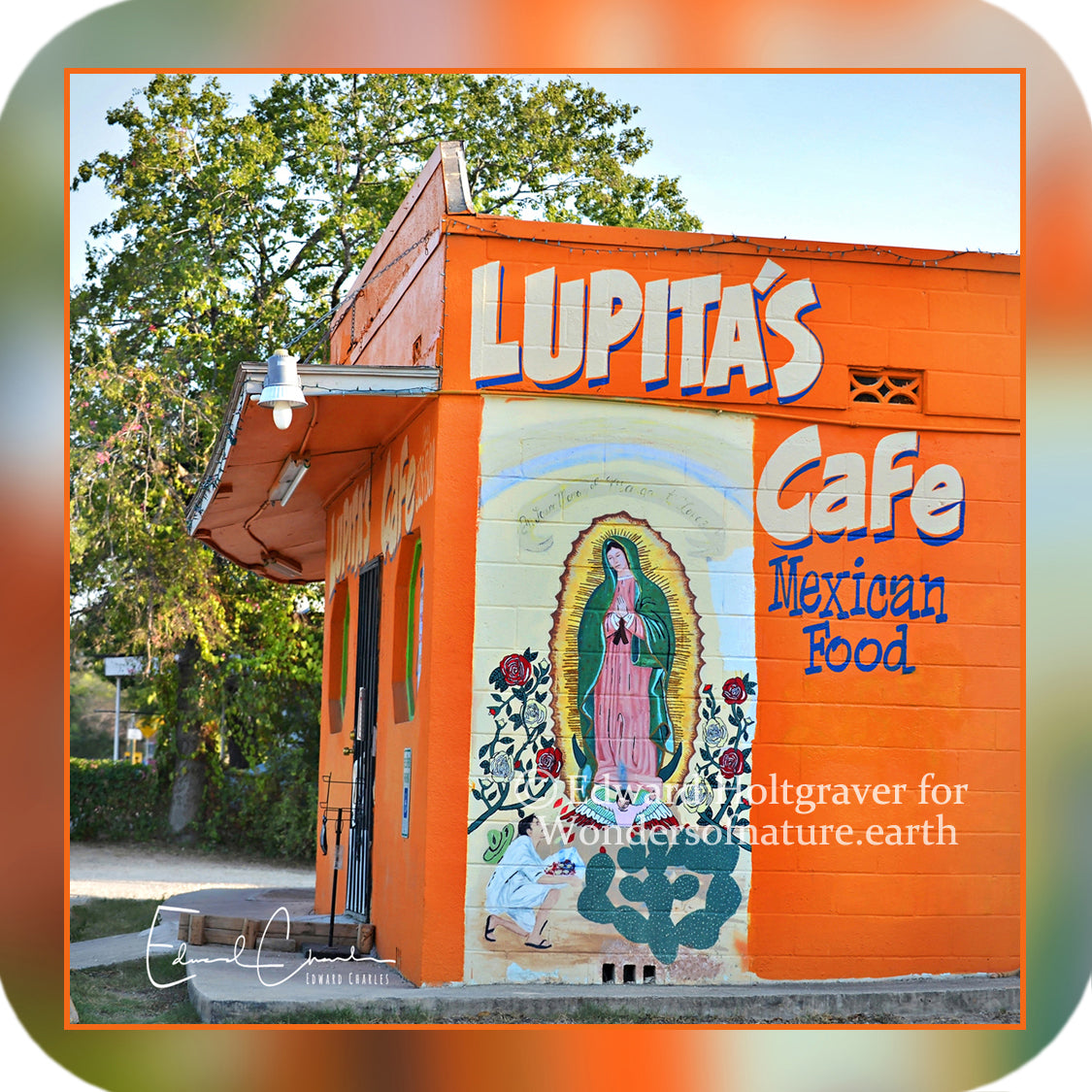 Structures - Lupita's Cafe in San Antonio