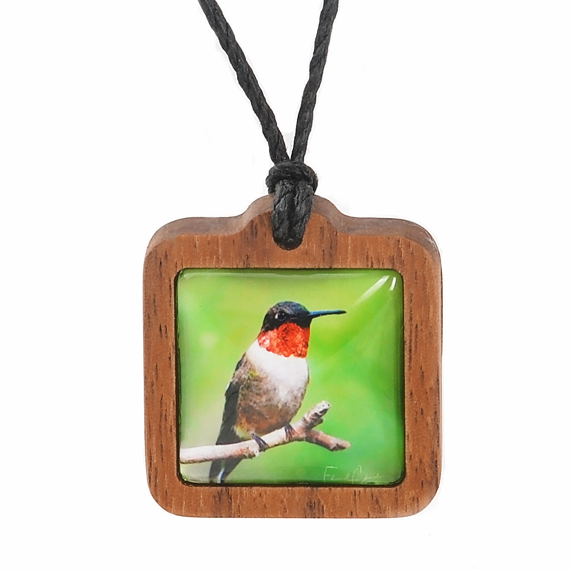 Hummingbird with Walnut Frame