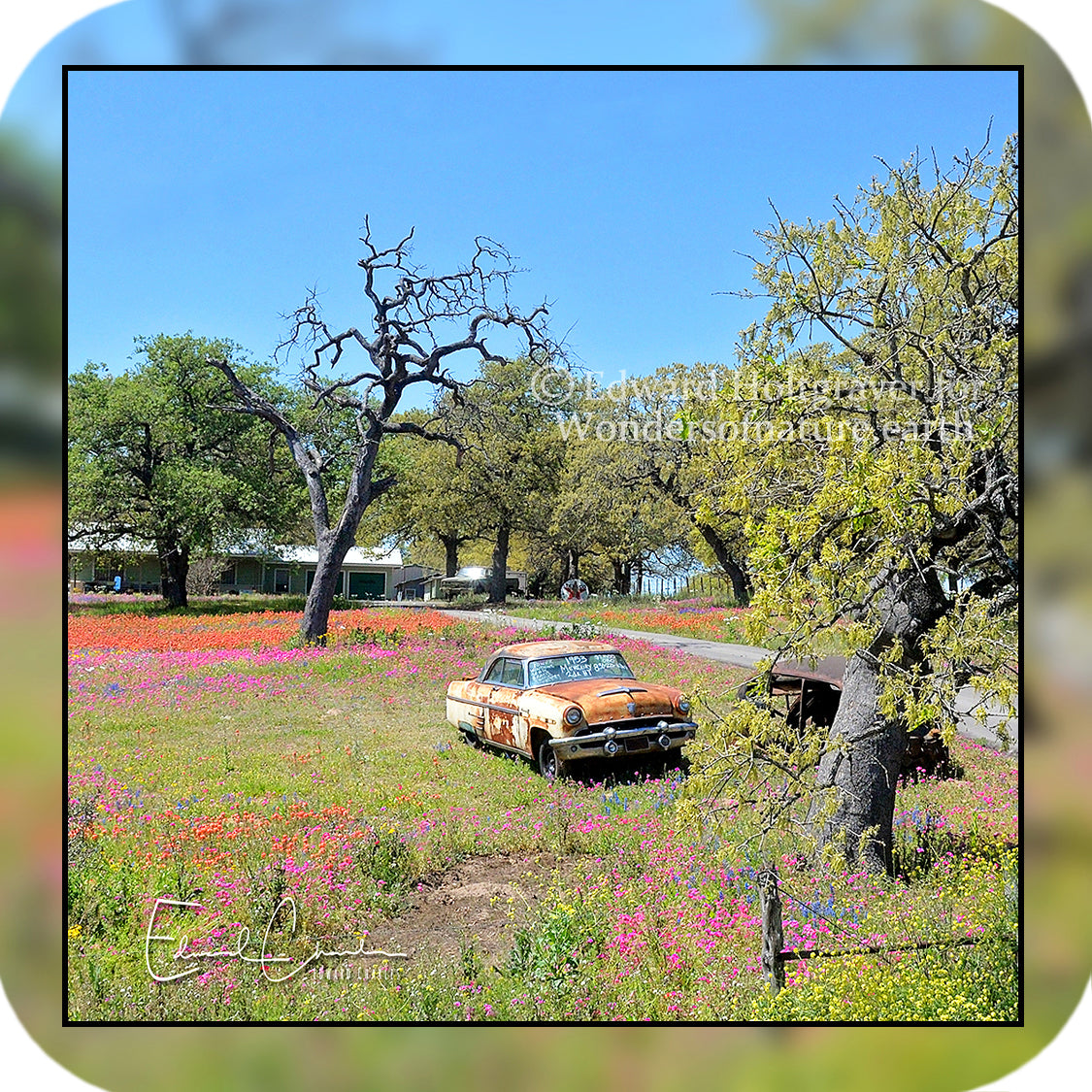 Rust - Car in Field