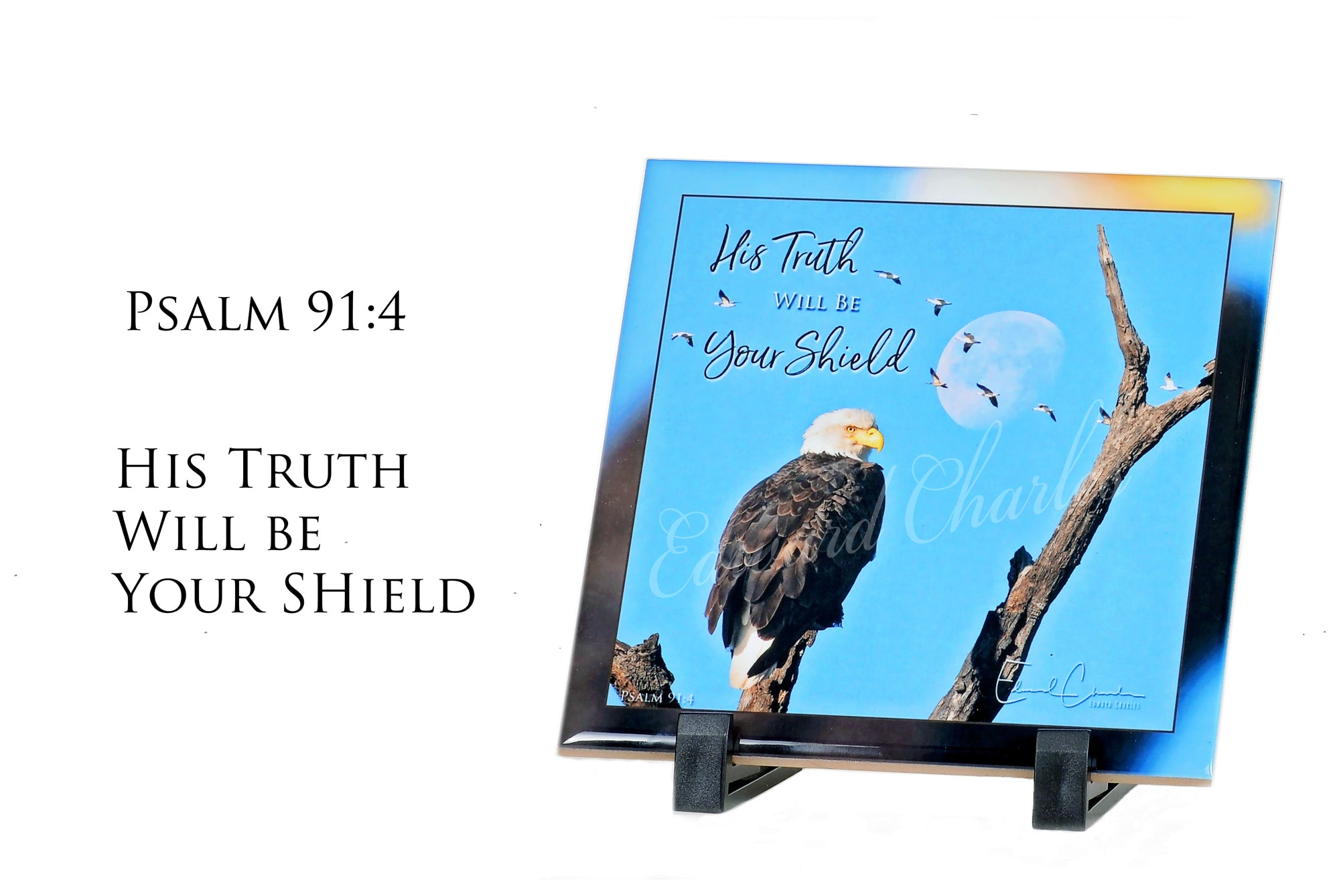 Eagle Moon / Psalm 91:4
