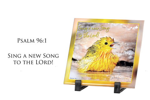 Yellow Warbler / Psalm 96:1