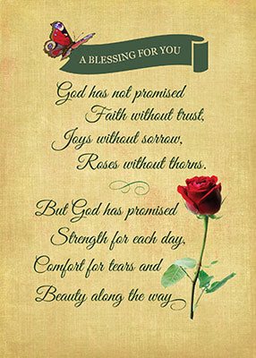 52337 Blessing, Red Rose Butterfly