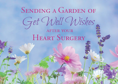 52230B After Heart Surgery, Get Well Wildflowers
