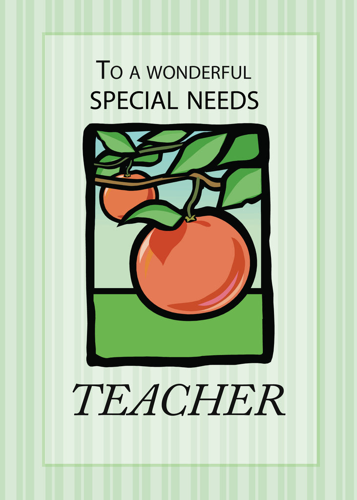 3495F Special Needs Teacher Thank You Apple