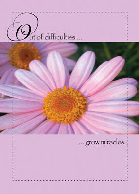 4443 Pink Daisy Miracles Encouragement