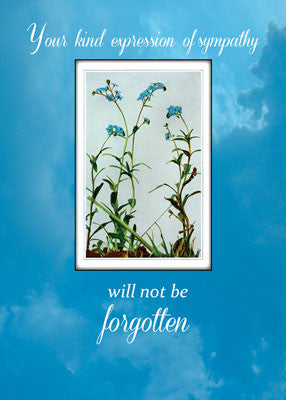51830 Sympathy Thank You Forget-Me-Not