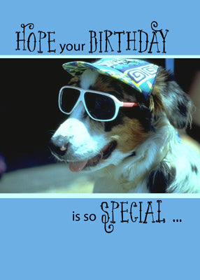 4121A Birthday Dog in Sunglasses, Humorous